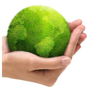 medio-ambiente.png